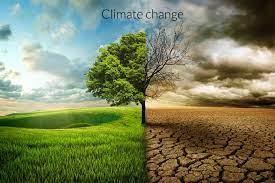 Climate Change Preparedness