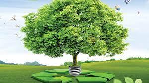 Environmental Res Mgt